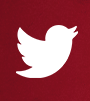 twitter logo with link to Team USA's profile
